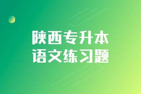 陕西专升本语文练习题