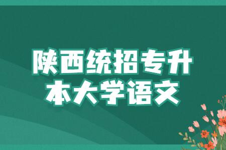 陕西统招专升本大学语文